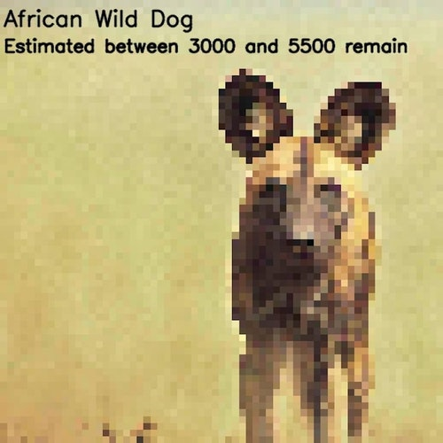 04-pixel-photo-endangered-species